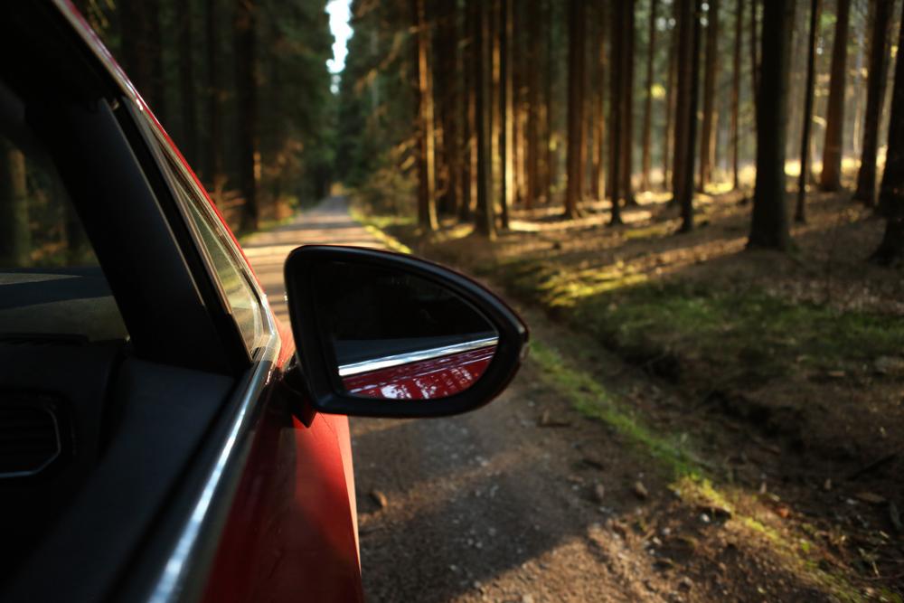 Auto fährt durch Wald