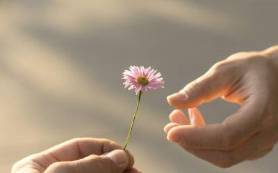 Frühlingsboten: An Gottes Segen ist alles gelegen